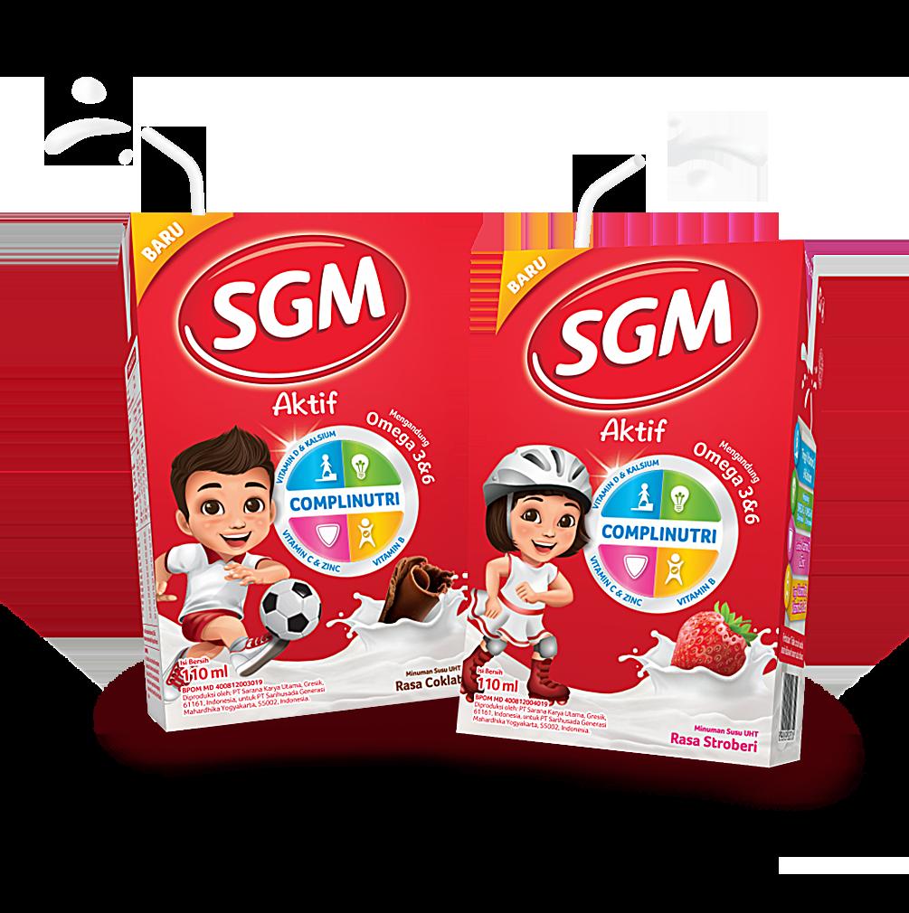SGM Aktif