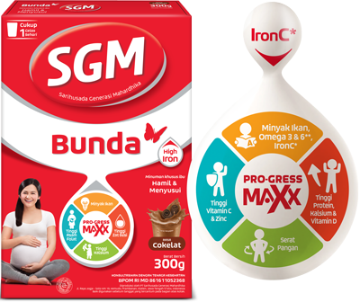 SGM Bunda Hamil & Menyusui