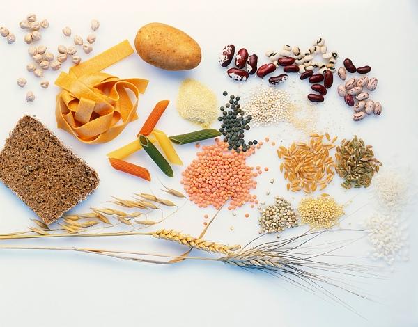 Mengenal Aneka Makanan Pokok Indonesia Nutrisi Untuk Bangsa